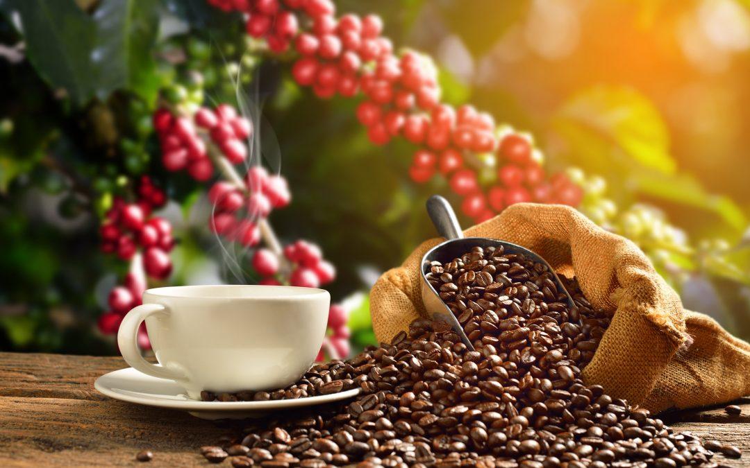 什麼時候來杯咖啡最好呢?